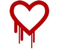 Heartbleed vulnerability