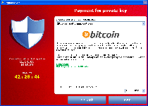 CryptoLocker Ransomware Screenshot 7